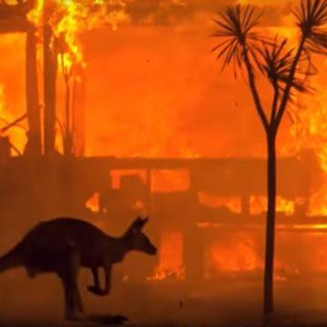 Εμπρησμοί στην Αυστραλία: Μετά το 2020 ο κόσμος δεν θα είναι αυτός που ξέρουμε.